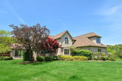 Ann Arbor Single Family Home For Sale: 3982 Barton Farm Court