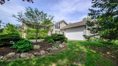 Saline Single Family Home For Sale: 9049 Whispering Pines Drive