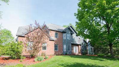 Ann Arbor MI Single Family Home For Sale: $499,900