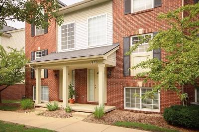 Ann Arbor MI Condo/Townhouse For Sale: $229,900