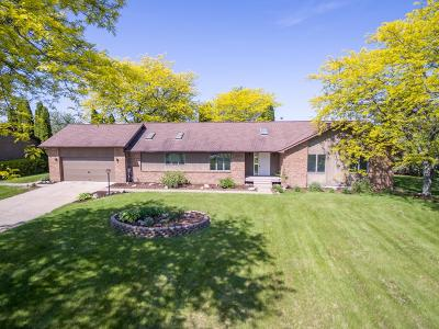 Manchester Single Family Home For Sale: 8600 M 52