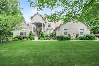 Chelsea Single Family Home For Sale: 6570 Woodvine Drive