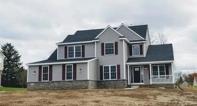 Saline Single Family Home For Sale: 10437 Gray Knoll