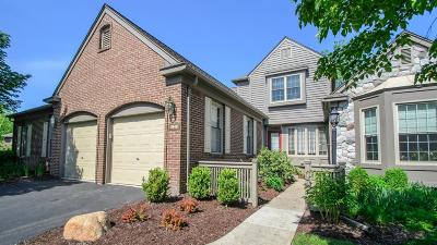 Ann Arbor MI Condo/Townhouse For Sale: $629,900