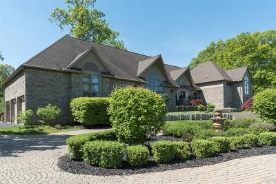 Luxury Homes For Sale In Manchester Mi