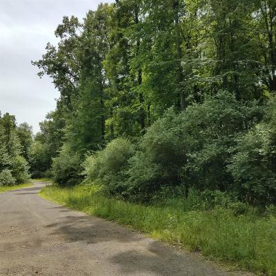 Dexter Residential Lots & Land For Sale: Cody Parcel 1ab