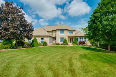 Ann Arbor Single Family Home For Sale: 4814 Gullane Drive