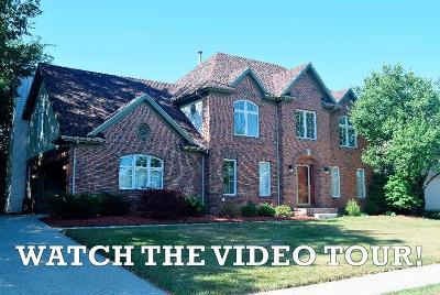 Ann Arbor Single Family Home For Sale: 1757 Briar Ridge Drive