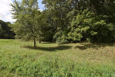 Chelsea Residential Lots & Land For Sale: 896 Ridge Road