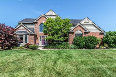 Ann Arbor Single Family Home For Sale: 4468 Augusta Court