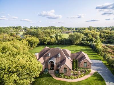 Ann Arbor Single Family Home For Sale: 7688 Ellens Way Street