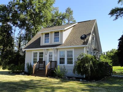 Chelsea Single Family Home For Sale: 17364 M-52 Highway
