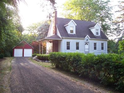 Ypsilanti Single Family Home For Sale: 5281 Crane Road