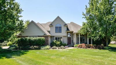 Single Family Home Active-Contingent: 4961 Hidden Brook Lane