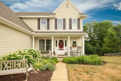Whitmore Lake Single Family Home For Sale: 5516 Seney Circle