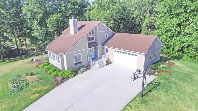 Whitmore Lake Single Family Home For Sale: 4321 Walsh