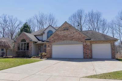 Saline Single Family Home For Sale: 367 Rosebud Lane