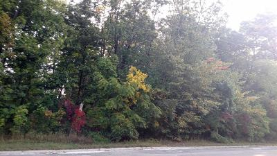 Whitmore Lake Residential Lots & Land For Sale: Nine Mile Road
