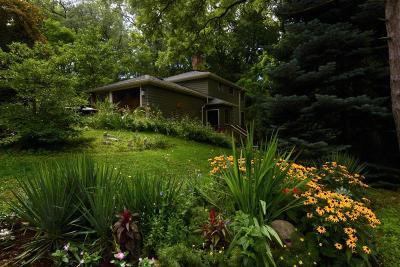 Ann Arbor MI Single Family Home For Sale: $785,000