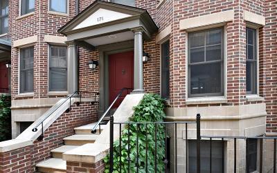 Ann Arbor Condo/Townhouse For Sale: 171 Ashley Mews Drive