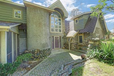 Manchester Single Family Home For Sale: 11815 Pleasant Lake Road