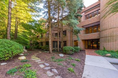 Ann Arbor MI Condo/Townhouse For Sale: $725,000