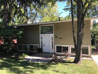 Ann Arbor MI Single Family Home For Sale: $385,000