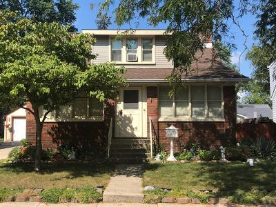 Milan Single Family Home For Sale: 299 Ideal Street