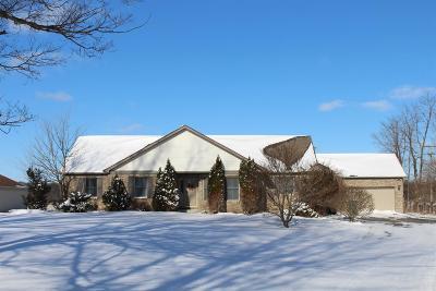 Ypsilanti Single Family Home For Sale: 7875 Judd Road