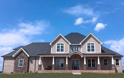 Saline Single Family Home For Sale: 7220 Wapiti Way