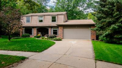 Single Family Home For Sale: 3361 Yellowstone Drive