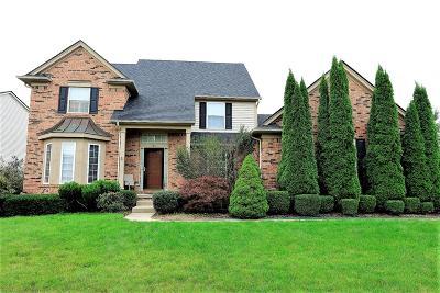 Ypsilanti Single Family Home For Sale: 9550 East Endicott