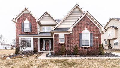 Ypsilanti Single Family Home For Sale: 9265 Normandy Lane