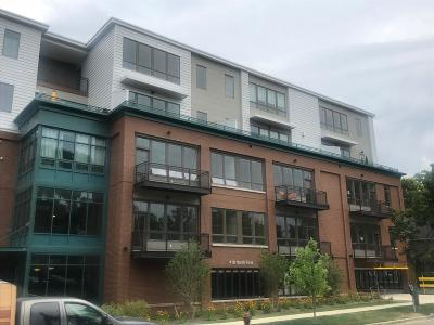 Ann Arbor Condo/Townhouse For Sale: 410 North First Street #206