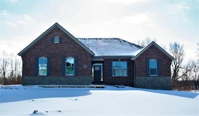 Dexter Single Family Home For Sale: 6103 Merkel Road