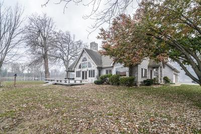 Pinckney Single Family Home For Sale: 4853 Downing Drive