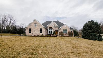 Dexter Single Family Home For Sale: 7718 Brass Creek Court