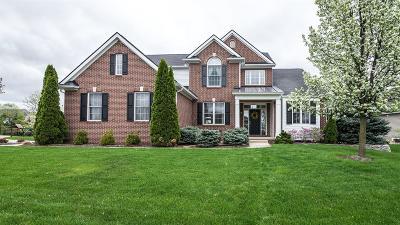 Ann Arbor Single Family Home For Sale: 6327 Edgewood Drive