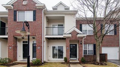 Ann Arbor Condo/Townhouse For Sale: 273 Scio Village Court