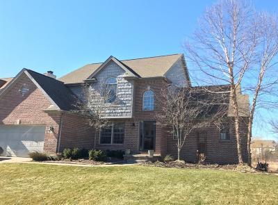 Ann Arbor Single Family Home For Sale: 6350 Wilson Road