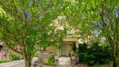 Ann Arbor Single Family Home For Sale: 514 N Main Street