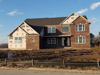 Saline Single Family Home For Sale: 10234 Valley Farms Road
