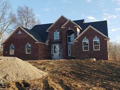 Saline Single Family Home For Sale: 10233 Valley Farms Road