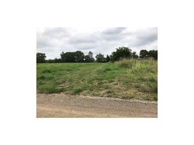 Dexter Residential Lots & Land For Sale: 901 Steinbach