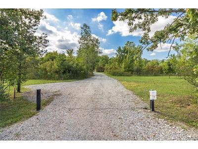 Ypsilanti Residential Lots & Land For Sale: 8724 Hitchingham Road