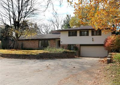 Ypsilanti Single Family Home For Sale: 1330 Ellis Rd
