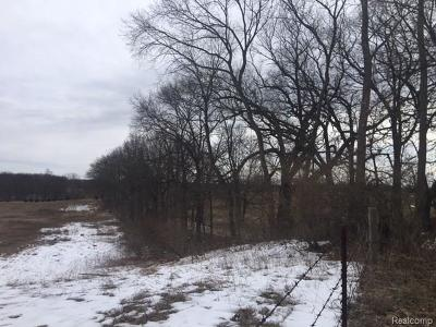 Dexter Residential Lots & Land For Sale: Madden