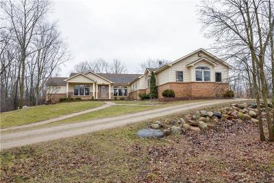 Whitmore Lake Single Family Home For Sale: 7100 Peninsula Pnt