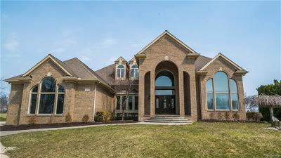 Ann Arbor Single Family Home For Sale: 748 Eltham Ct