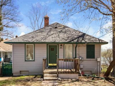 Whitmore Lake Single Family Home For Sale: 6254 Buckshore Dr